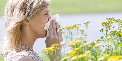 Hva er din allergi godt for?